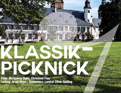 Klassik-Picknick